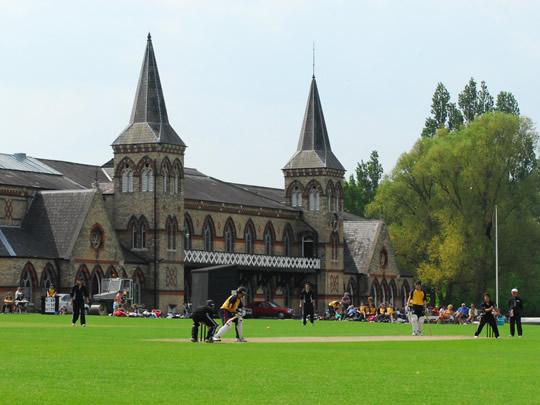 Фестиваль по крикету