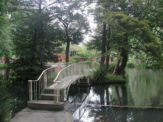 Территория школы Cheltenham College