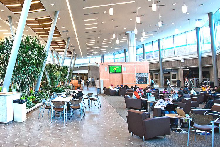 Рабочая зона Niagara College