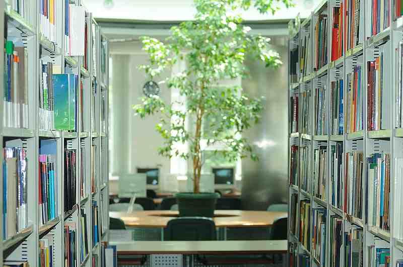 Библиотека Lasarski University
