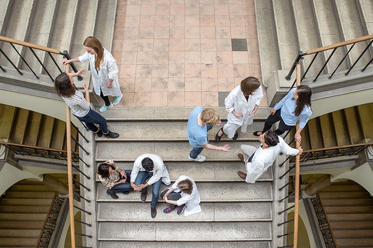Студенты-медики Universität Wien