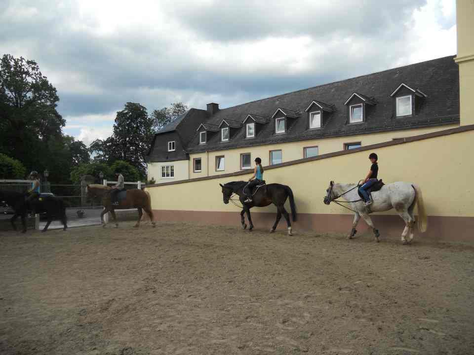Уроки верховой езды в Humboldt-Institut Witgenstein