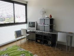 Резиденция для проживания, International University in Geneva