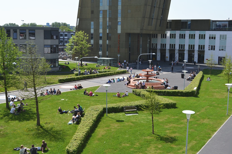 Территория Hanze University of Applied Sciences
