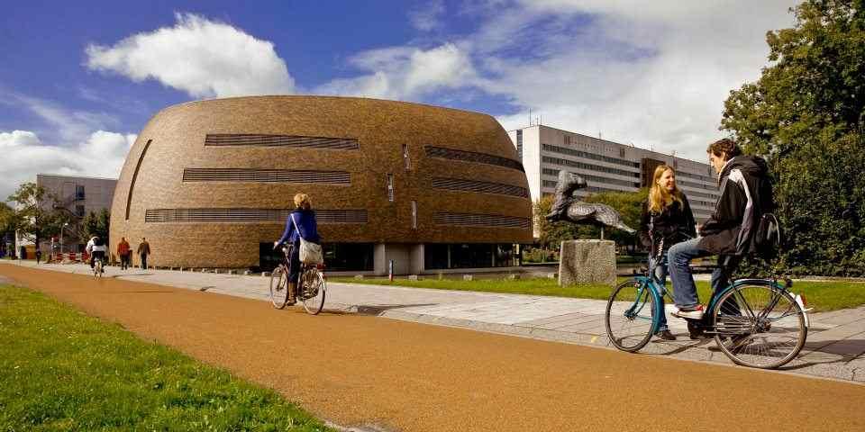 Кампус The University of Groningen