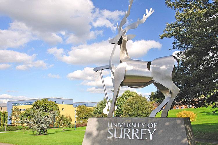 Символ University of Surrey