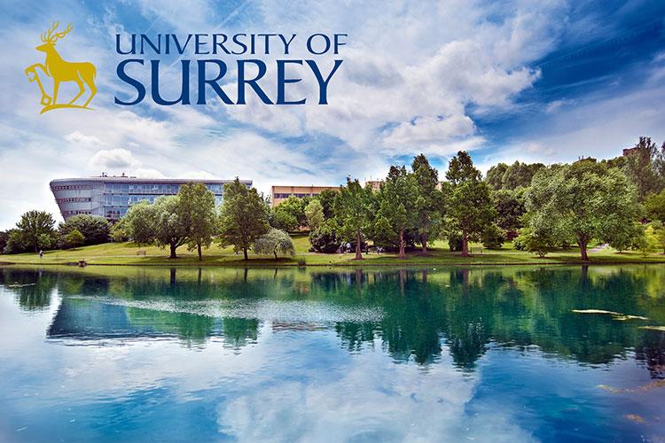 Общий вид University of Surrey