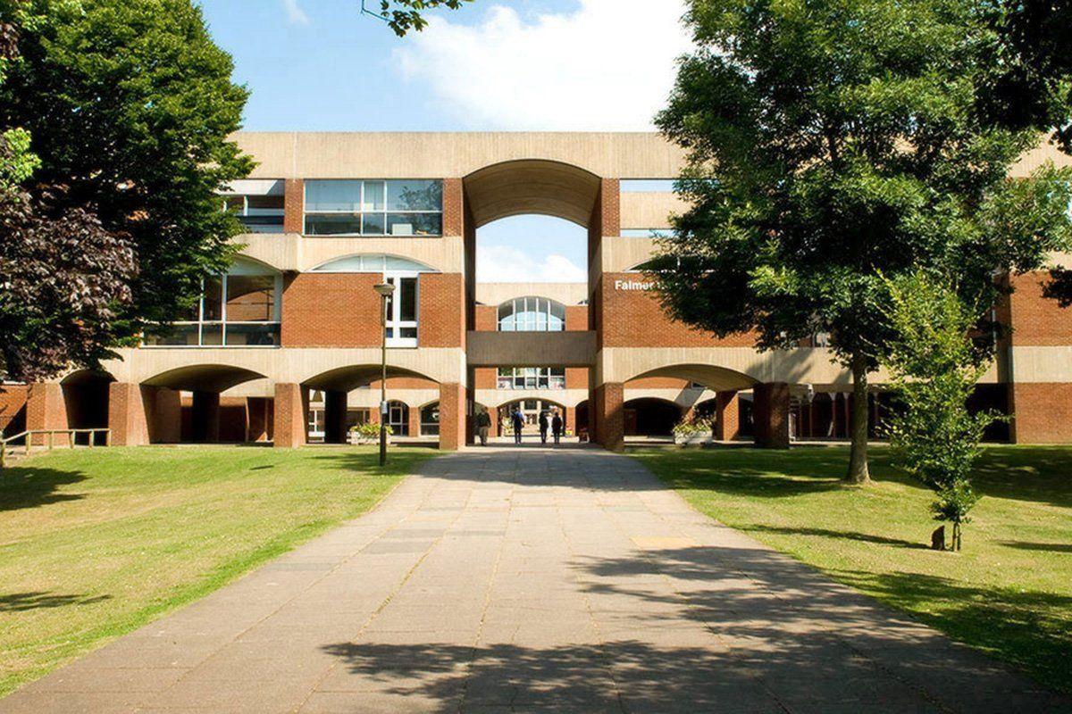 Кампус University of Sussex