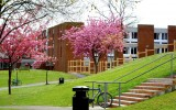 Студенты University of Sussex