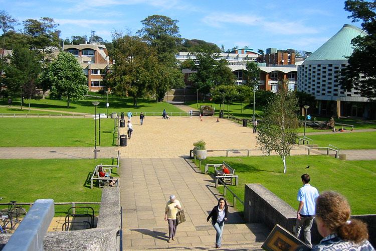 Территория University of Sussex