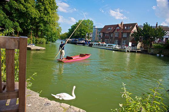 Сплав по реке в Оксфорде