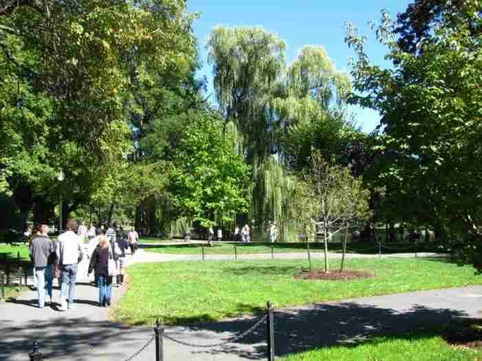 Парк вблизи школы
