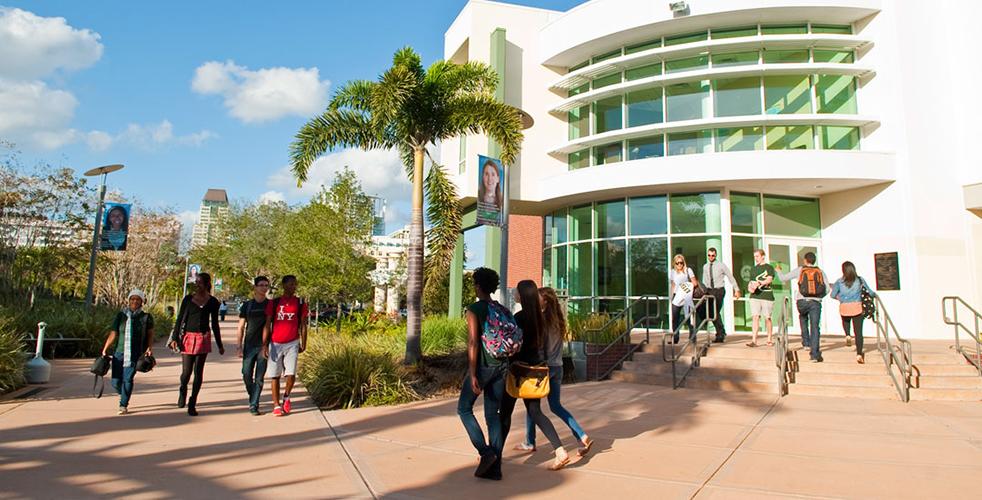 Один из корпусов University of South Florida