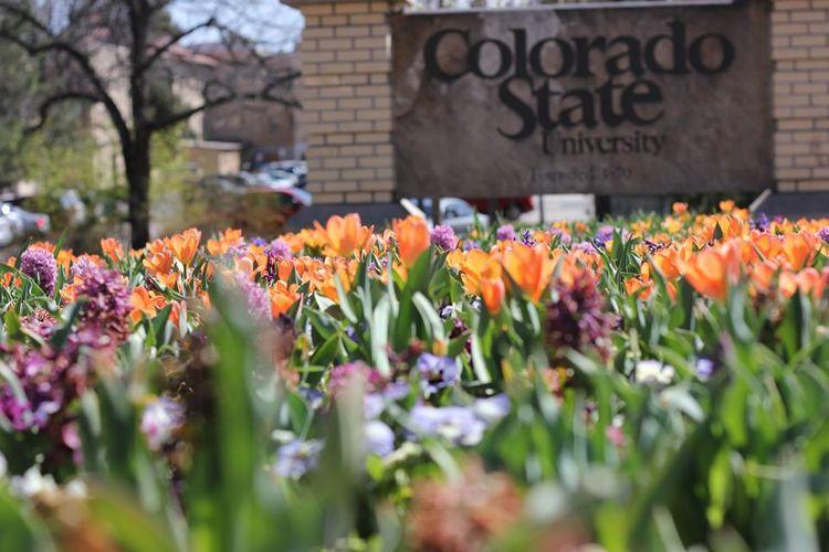 Сад Colorado State University
