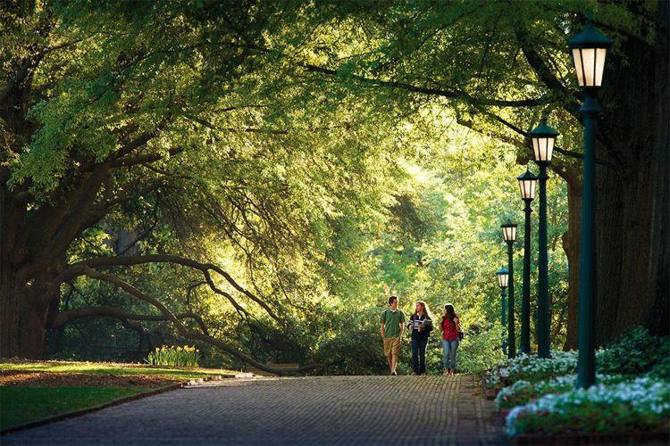Парк при University of South Carolina