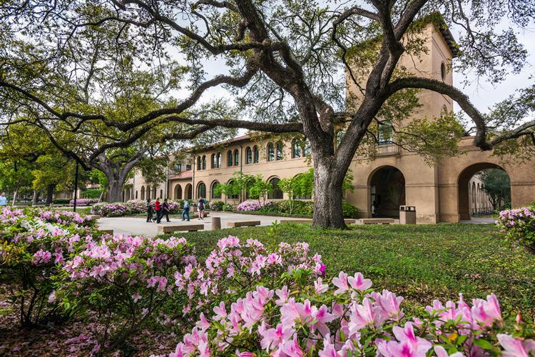 Кампус Louisiana State University весной