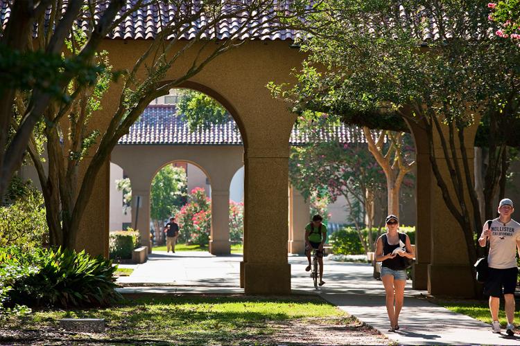 Территория Louisiana State University
