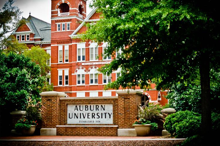 Общий вид Auburn University