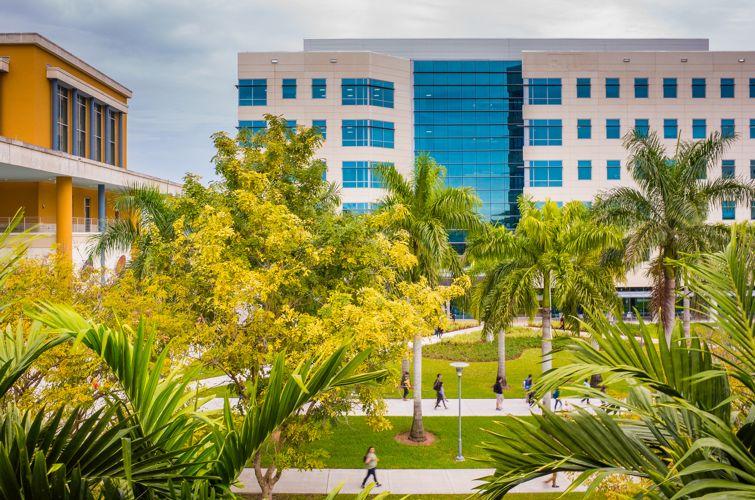 Вид сверху на кампус Florida International University