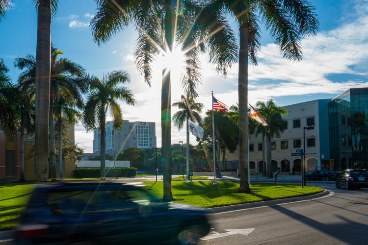 Солнечный день в Florida International University