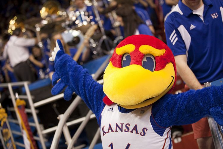 Официальный символ The University of Kansas