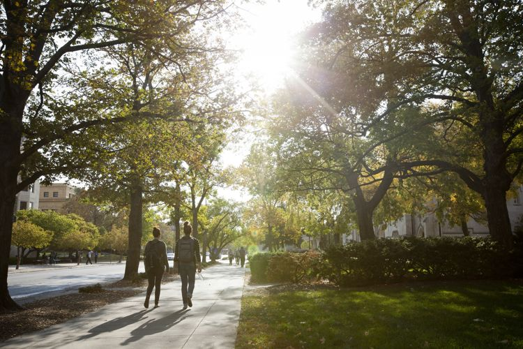 Кампус The University of Kansas