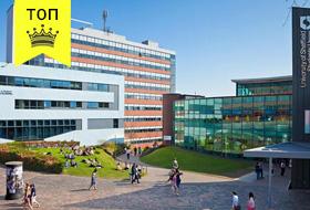 University of Sheffield ⭐