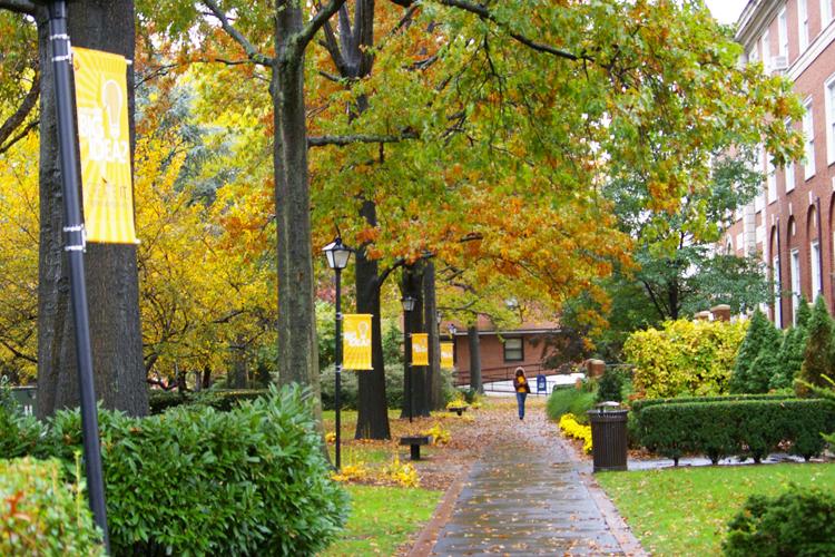Кампус Adelphi University осенью
