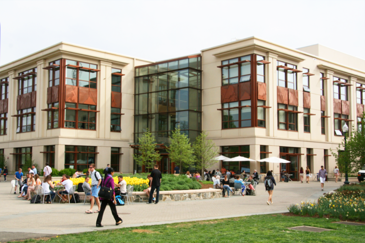 Кампус American University