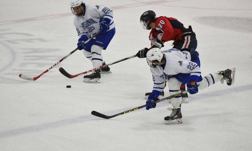 Хоккейная команда State University of New York at Fredonia