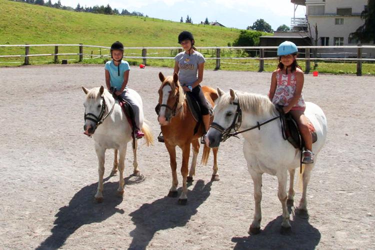 Уроки верховой езды в Alpadia, Leisyn