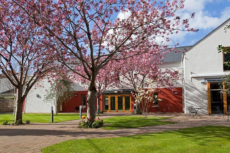 Задний двор Emerald Cultural Institute Palmerston Park