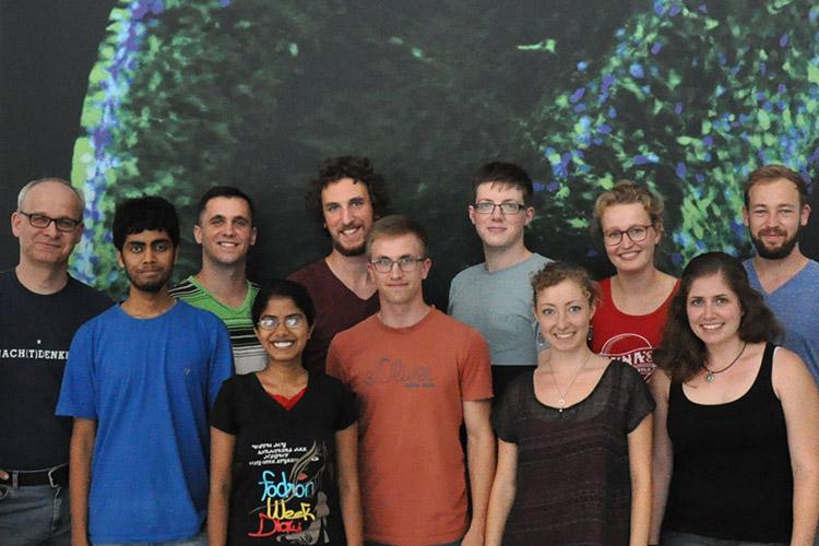 Преподавательский состав Technische Universität Dresden