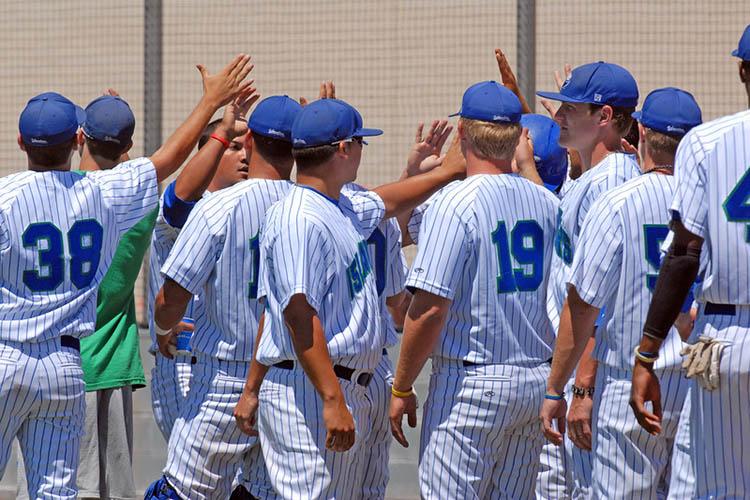 Бейсбольная команда Texas A&M University-Corpus Christi