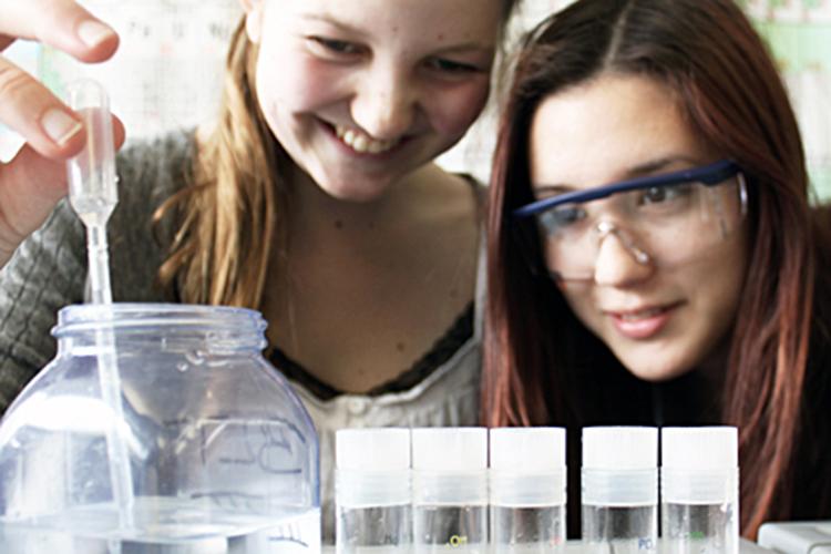 Лабораторные занятия в Stiftung Louisenlund