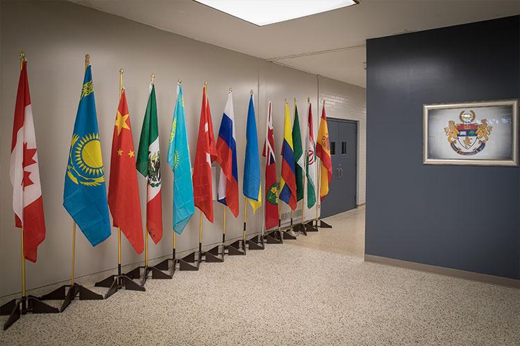 Флаги разных стран в Royal Elite International Academy
