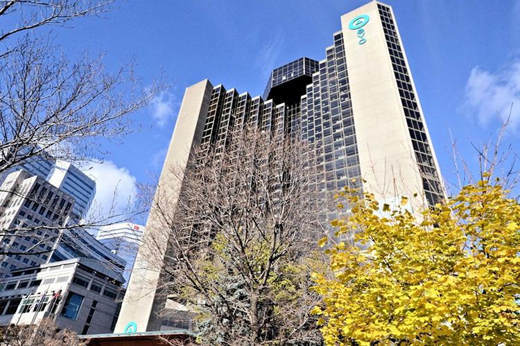 Резиденция LaSalle College Montreal