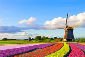 Сколько стоит переехать на учёбу в Голландию