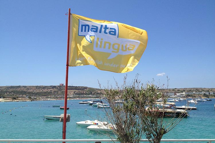 Флаг Maltalingua
