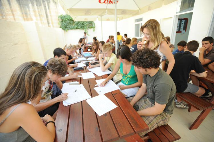 Учебный процесс Maltalingua
