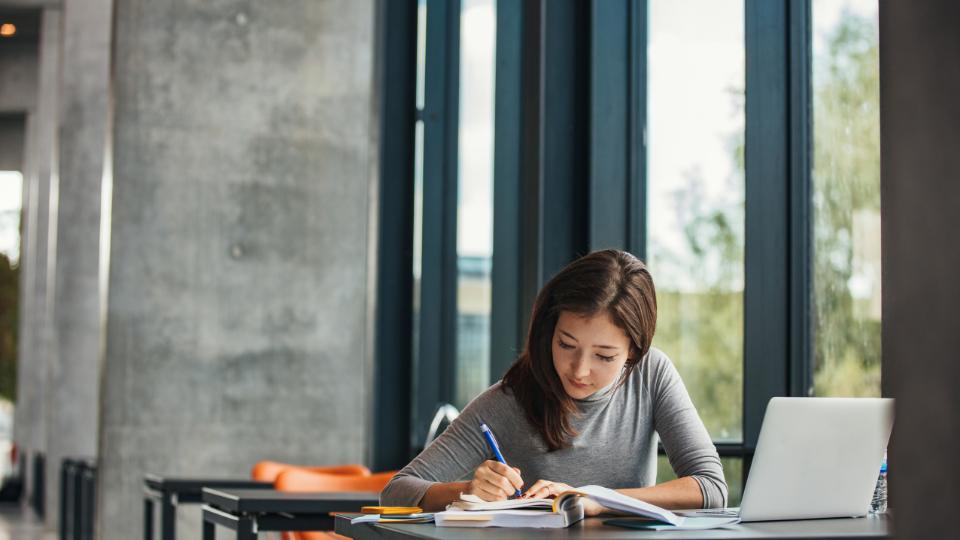 Как сделать перевод диплома или транскрипт? Инструкция