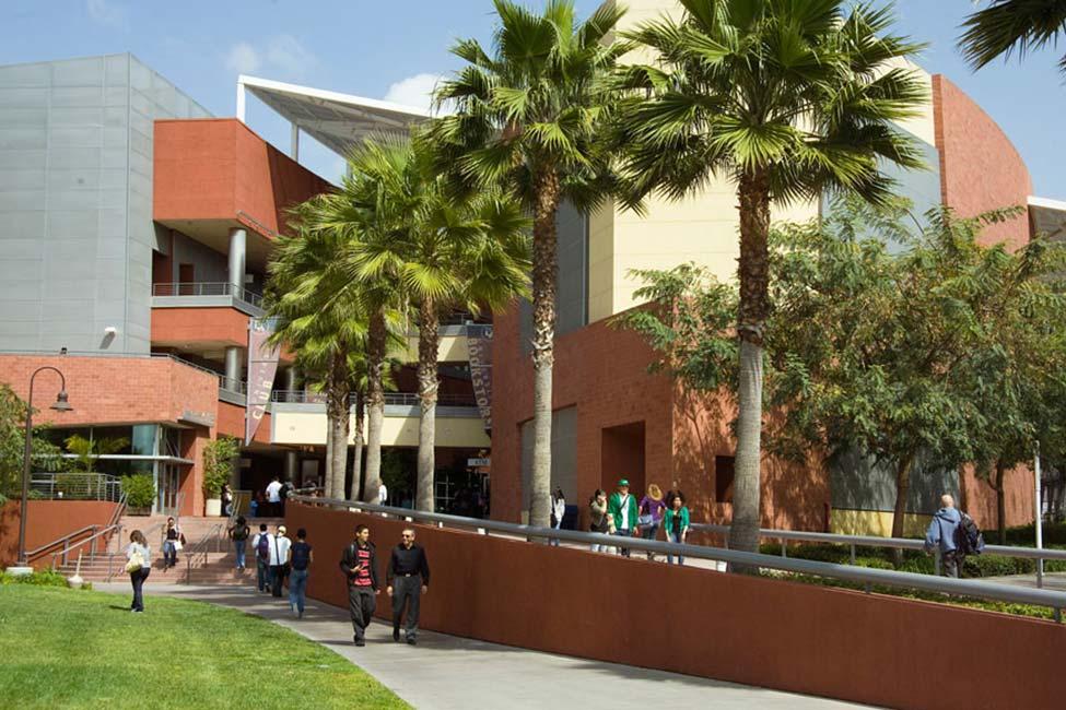 Студенты Embassy Summer Schools, Los Angeles – California State University